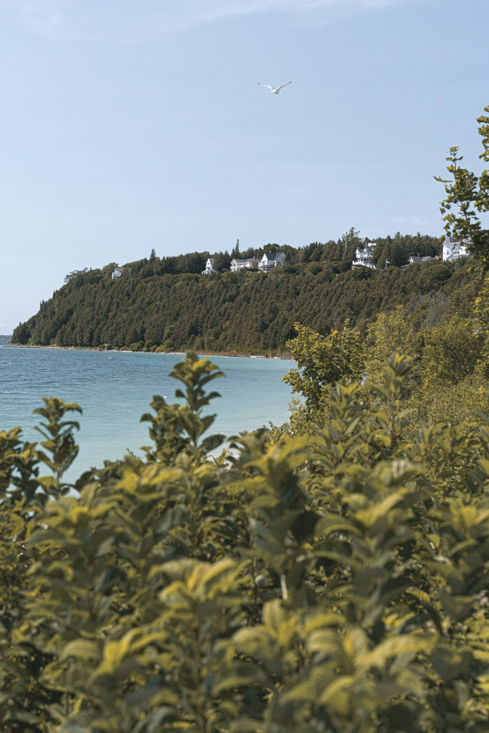 Mackinac Island By Cameron