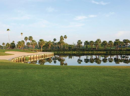 The 9th green at Vinoy Golf Club looking back on No. 7 tee box. PHOTO COURTESY OF MARRIOTT HOTELS & RESORTS